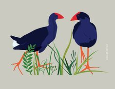 New Zealand Bird Pukeko / Australasian swamphen Optical Illusion Quilts, N Animals, Kiwi Bird, Brand Character, Bird Applique, New Zealand Art, Nz Art, Kiwiana, Illustration Styles