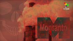 The Empire Files: Monsanto, America's Monster - Part 1