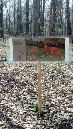 Take a Story Walk Nature Activities, Teaching Activities, Educational Activities, Classroom Activities, Natural Play Spaces, Fitness Trail, Nature Story, Summer Reading Program, Riding Lessons