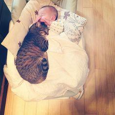 babies make the best pillows