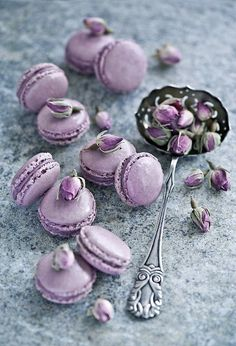 lavender macaroons - had these at the french bakery in wayne once.  INCREDIBLE!