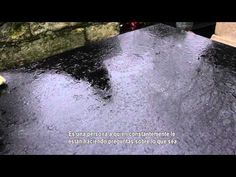 Tribute to Francois Truffatut - YouTube