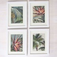 Collect a series of frames to create a story www.escapetoparadise.com.au