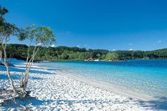 Fraser Island, Australia...No place in the world like it.... Ocean, rainforest, lakes, dunes, amazing!