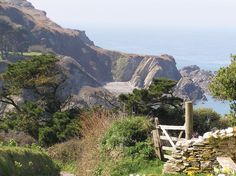 To walk one of the coastal paths in North Devon or Cornwall.  Slates creating a coastal landscape of bay and headland - Lee Bay, near Ilfracombe