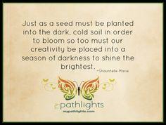 #pathlights #mypathlights #bloom #shine #creativity