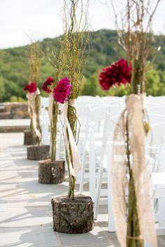 Tree stumps filled with dahlias and willow line the aisle for a unique decor. :: Photo by Holly Chapple Flowers