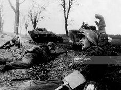 WW Pommerania, warzone: - eastern front, Feb.-Apr.1945 - defensive battle in southwest farther pomerania: German positions alongside a country road.