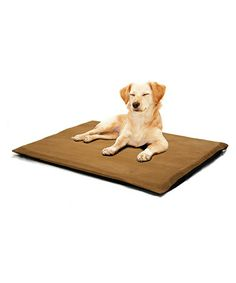 Take a look at this Camel 2'' Orthopedic Foam Pet Bed on #zulily today!