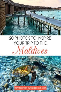 The Maldives is one of those bucket list places you just have to experience. We hope these 20 photos will inspire you to visit the beautiful country! Maldives Beach, Maldives Honeymoon, Visit Maldives, Maldives Travel, Maldives Trip, Honeymoon Night, Maldives Destinations, Travel Destinations, Asia Travel