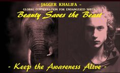 Jagger Khalifa is the perfect role model and a Big 5 patron to be a voice for the voiceless by representing Global Conservation Awareness for Endangered Species. Here he is standing up and Keeping the Awareness Alive for WORLD ELEPHANT DAY 12 August 2017 Haute Couture Paris, Couture Week, World Elephant Day, Awareness Campaign, Big 5, Fundraisers, Endangered Species, Stand Up, Conservation