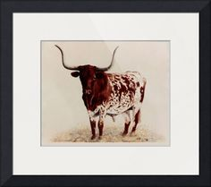 """""""Longhorn+painting""""+by+DiDi+Higginbotham,+Fort+Worth+Texas+//+'OLD+CHISHOLM'+Longhorn+Steer+8'x10'+//+Imagekind.com+--+Buy+stunning+fine+art+prints,+framed+prints+and+canvas+prints+directly+from+independent+working+artists+and+photographers."""