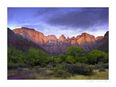 Towers of the Virgin, Zion National Park, Utah Posters by Tim Fitzharris at AllPosters.com