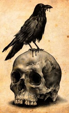 Skull with raven tattoo design.