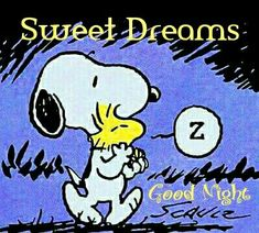 Goodnight from Snoopy and Sweet Baby Woodstock ☺️ Charlie Brown Quotes, Charlie Brown And Snoopy, Peanuts Cartoon, Peanuts Snoopy, Goodnight Snoopy, Goodnight Post, Cuadros Star Wars, Snoopy Comics, Snoopy Pictures