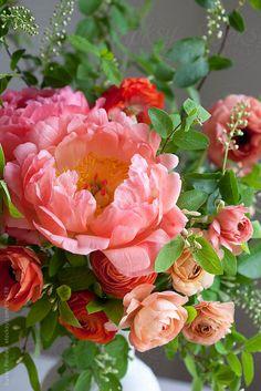 springbouquet de Susan Findlay para a Stocksy United - Blumen Motive - Arranjos Deco Floral, Arte Floral, Ikebana, Beautiful Flower Arrangements, Floral Arrangements, Amazing Flowers, Beautiful Flowers, Flower Pictures, Spring Flowers
