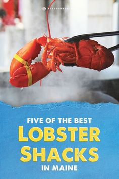 Grab the butter, dig in, and stuff your face at the best Lobster shacks in Maine!