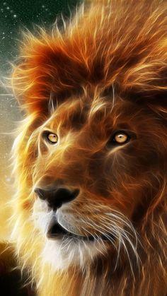 10 Ideas De León Animales Felinos Fotos De Leones