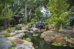 Beautiful waterfall and fish pond that transformed this suburban backyard.