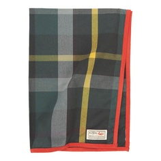 tartan tea towel! (say that three times fast)