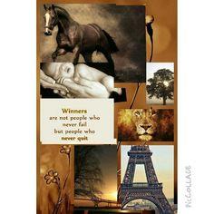 Winner- Moods