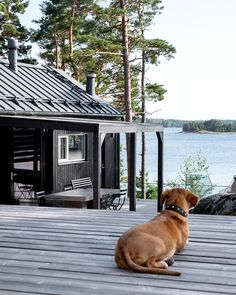 House Paint Exterior, Exterior Siding, Storybook Gardens, Taste Of Nature, Scandinavian Cabin, Modern Barn House, Outside Room, Lakeside Cottage, Metal Roof Colors