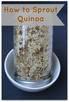 How to Sprout Quinoa - Healy Real Food Vegetarian #sprout #quinoa #howtosproutquinoa #sprouts #sprouting
