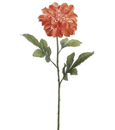 Bloom Room Dahlia Stem-Coral