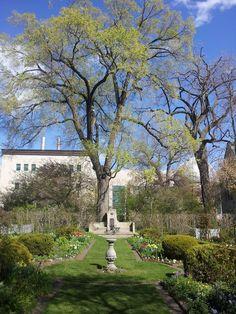 Shakespeare Garden (North Campus)