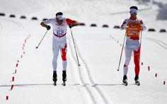 Brian McKeever, Rushan Minnegulov, Helena Ripa, Elena Remizova all won Paralympic titles in cross-country skiing.