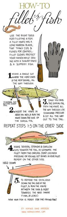 Infographic On How To Fillet A Fish - Tap The Link Now To Find Gadgets for Survival and Outdoor Camping Camping Survival, Survival Tips, Survival Skills, Camping Hacks, Camping Lunches, Survival Food, Wilderness Survival, Camping Essentials, Camping Ideas