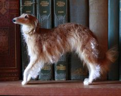 Absolutely amazing felt artistry in this Etsy store:  Custom needle felted pose-able sculpture of your dog... by Ainigmati