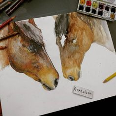 "Comission in progress  Today I've seen the film ""War Horse"".. I absolutely love this movie Do you know that the horse that plays  Joey is the same that plays "" SeaBiscuite? ""   Watercolors and Pencils on Paper   For comission send an email to Roxaoleen@gmail.com  Wanna see a free portrait of your horse?  Use the hashtag #roxaoleenhorse in the best photo of him for a chance to be chosen !!   #art_realistique #arts_gallery #artcomplex #imagionation_art #arts_help #arts_mag  #friesian…"