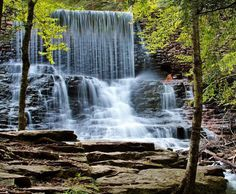 Waterfalls on Shades of death trail HRSP ( Hickory Run State Park, PA