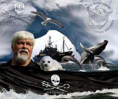 Sea Shepherds Rock!!