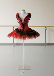 Tutu Don Quijote Tutu Costumes, Ballet Costumes, Tutu Ballet, Ballet Dance, Pointe Shoes, Costume Design, Kids Fashion, Dress Ideas, Beauty
