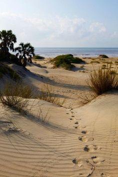 Love this part of the beach ! MAGGYCALHOUN.COM