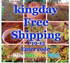 kingdaysale free shipping  code kingdayfreeship