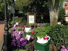 Epcot Flower & Garden Festival  Twinings Tea Garden, Each teacup is planted with the tea flavors. e.g. pomegranate, raspberry and pure peppermint. Cute idea.