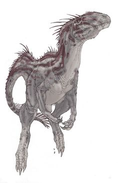 Carnosauria: Mapusaurus, Neovenator and Eocarcharia ★ || CHARACTER DESIGN REFERENCES (www.facebook.com/CharacterDesignReferences & pinterest.com/characterdesigh) • Love Character Design? Join the Character Design Challenge (link→ www.facebook.com/groups/CharacterDesignChallenge) Share your unique vision of a theme every month, promote your art and make new friends in a community of over 20.000 artists! || ★