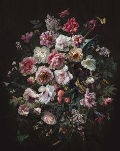 The Dramatic Photography of Yang Lee Art Floral, Fotografia Floral, Flower Landscape, Floral Photography, Dramatic Photography, Digital Photography, Oil Painting Flowers, Rose Art, Flower Aesthetic