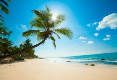 Butuh Liburan, 5 Pantai Cantik Ini Wajib Dikunjungi