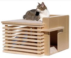 Cat House Or Litter Box And Like OMG! Get Some Yourself Some Pawtastic  Adorable Cat Apparel!