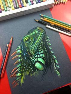 Iguana drawing on black paper.
