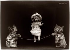 "Kittens of Doom: 1914. ""Two cats, dressed as humans, holding rope, which doll appears to be skipping."" By Harry Whittier Frees."