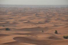 Dubai Desert Dubai Desert, Nikon, Deserts, Desserts, Dessert