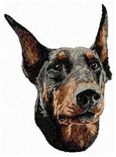 Stock of embroidery designs Color Blending, Cat Breeds, Animals And Pets, Embroidery Designs, Dog Cat, Portrait, Cats, Pets, Cat