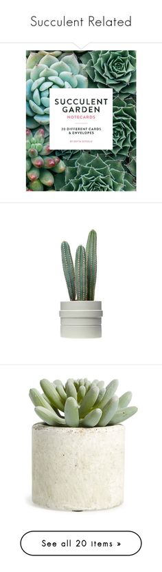 """""""Succulent Related"""" by tayscutts ❤ liked on Polyvore featuring home, home decor, stationery, fillers, books, decor, backgrounds, floral decor, plants and flowers"""