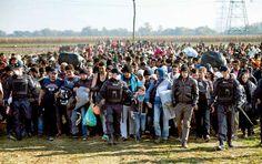 Sloveniens gräns på måndagen. Flyktingkrisen utnyttjas enligt informationskrigsexperter av en tredje part som har intresse av att underblåsa främlingsfientligheten i Europa.