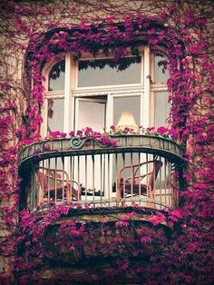 Ivy Balcony, Paris, France photo via sophy - Blue Pueblo. This is the most romantic balcony I've ever scene. Only in Paris, baby! France Photos, Belle Villa, Fun Cup, Window Boxes, Belle Photo, My Dream Home, Windows And Doors, The Good Place, Perfect Place